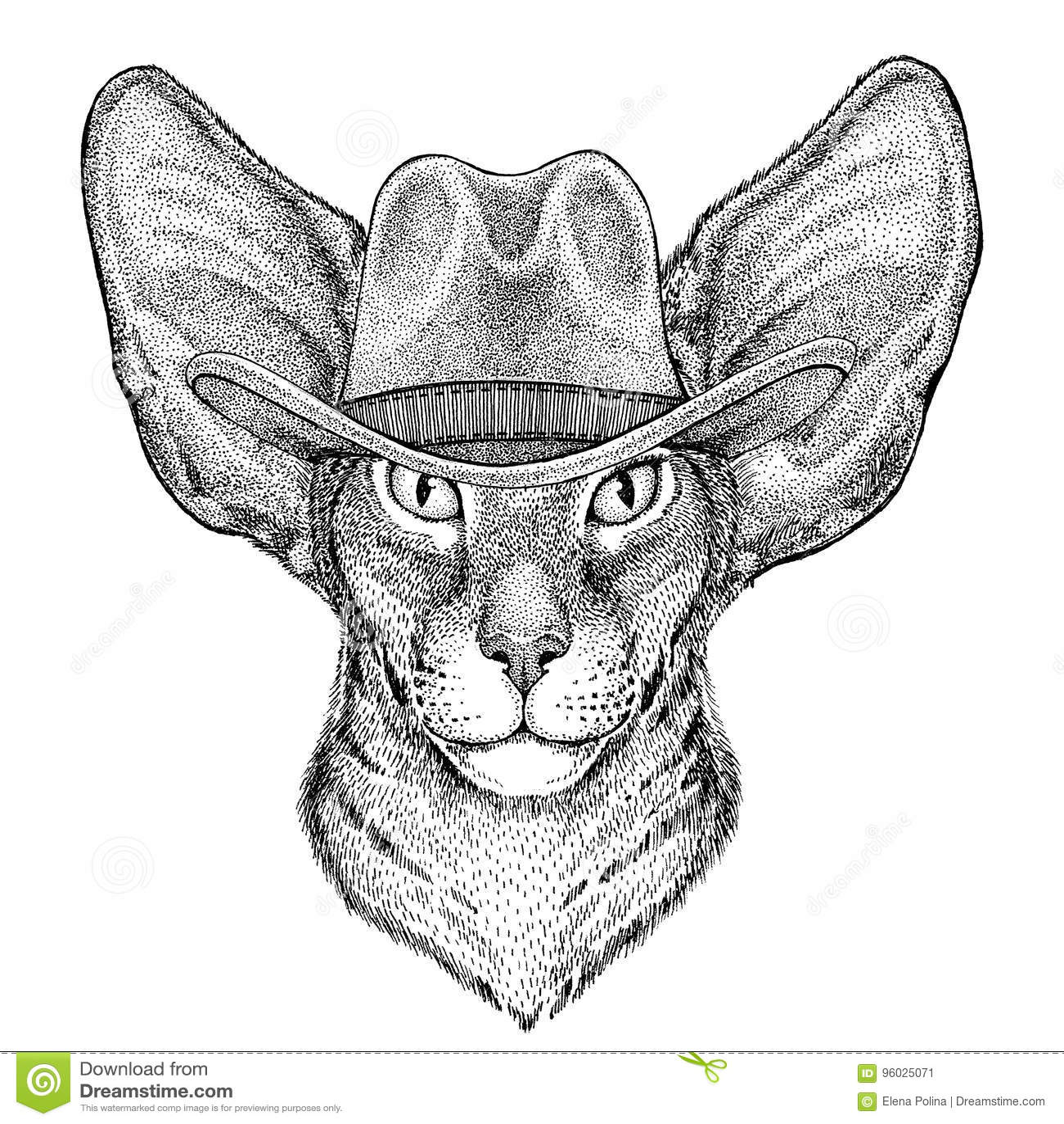 ca803a82 Oriental Cat With Big Ears Wild Animal Wearing Cowboy Hat Wild West ...