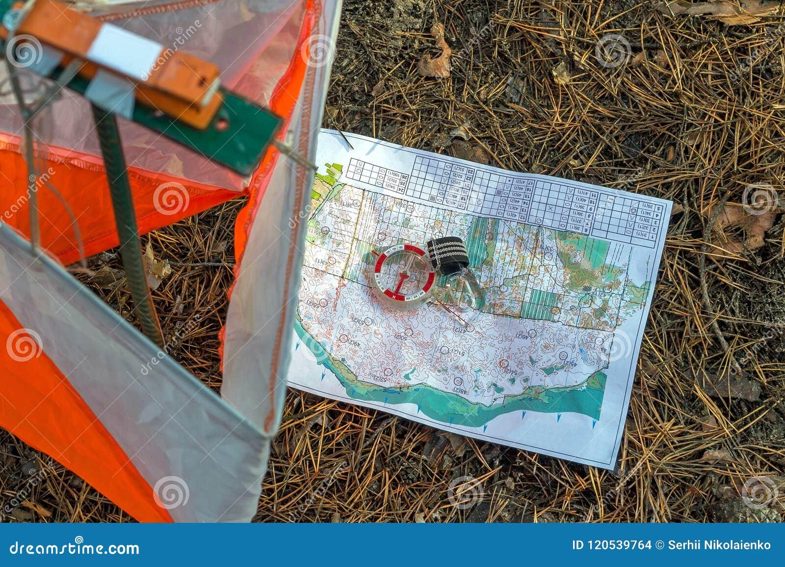Orienteering Compasso, mapa, prisma do ponto de verificação e composter para orienteering na floresta em agulhas caídas do outono