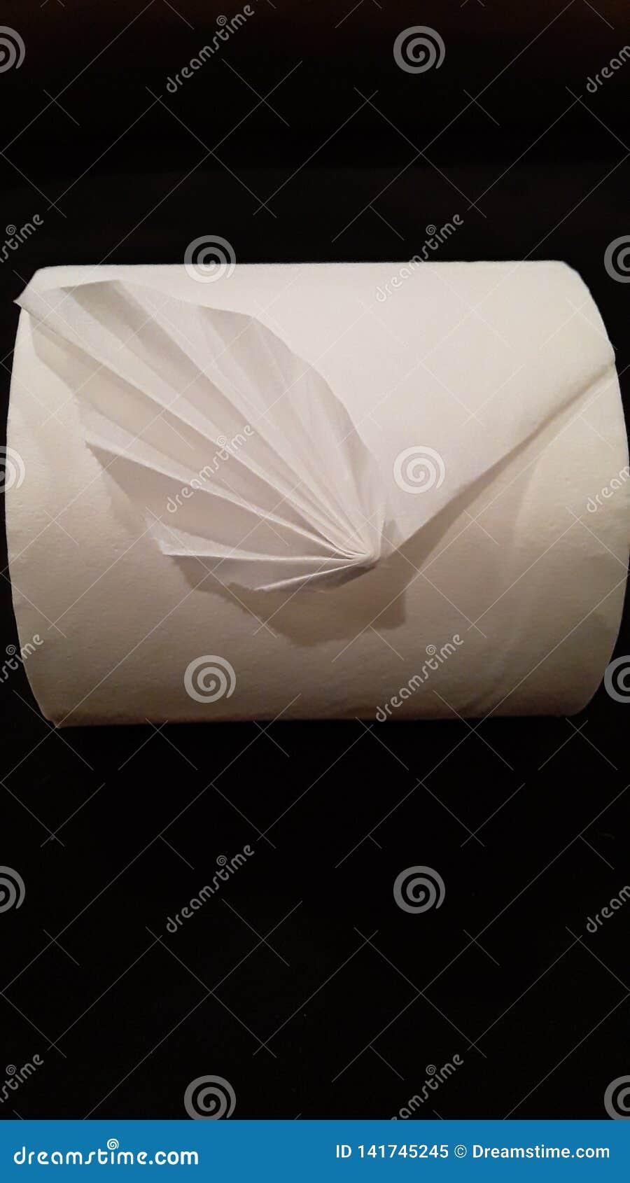 Origami de papier hygiénique