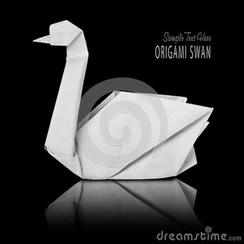 Origami Paper White Swan Stock Image Image Of Wildlife 79002677