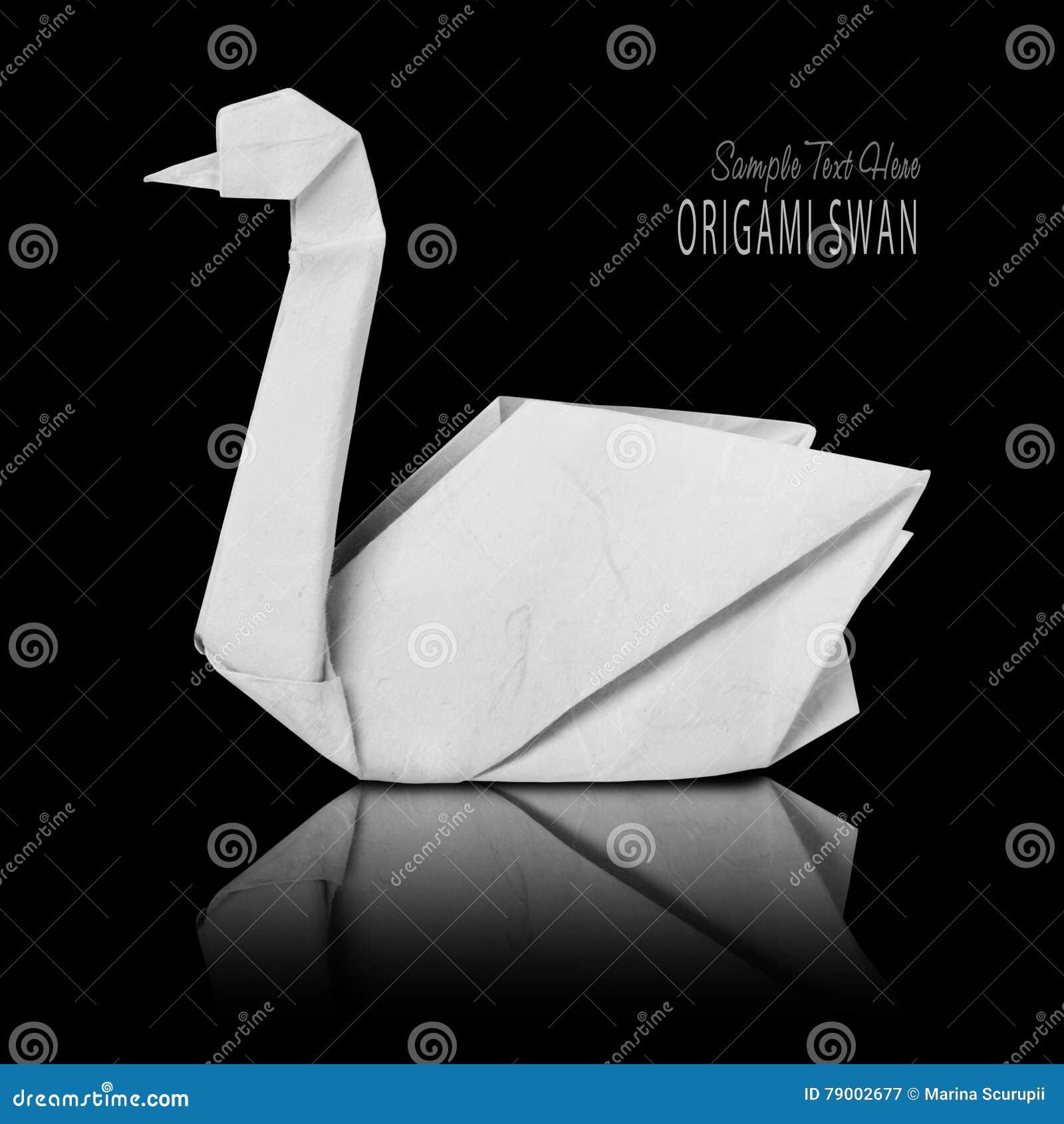 Origami Paper White Swan Stock Image Image Of Wildlife 79002677