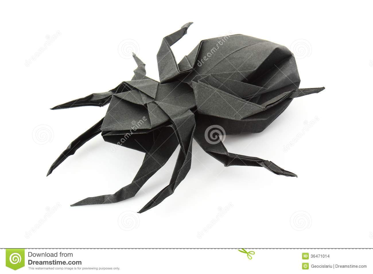 Origami Spider Stock Photo Image Of Paper Insect Chinese 36471014