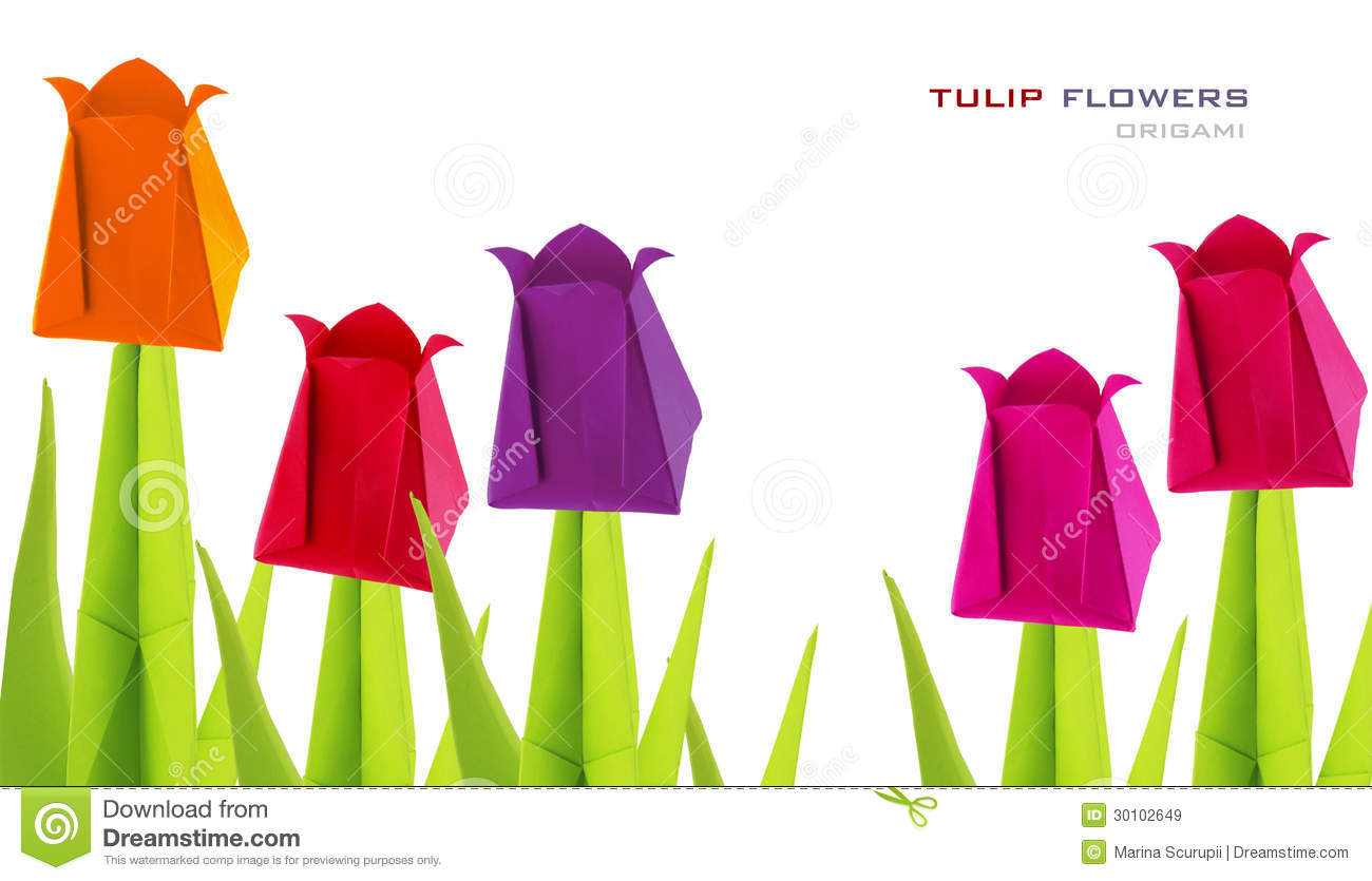 Origami Tulip Flowers Stock Image Image Of Origami Small 30102649