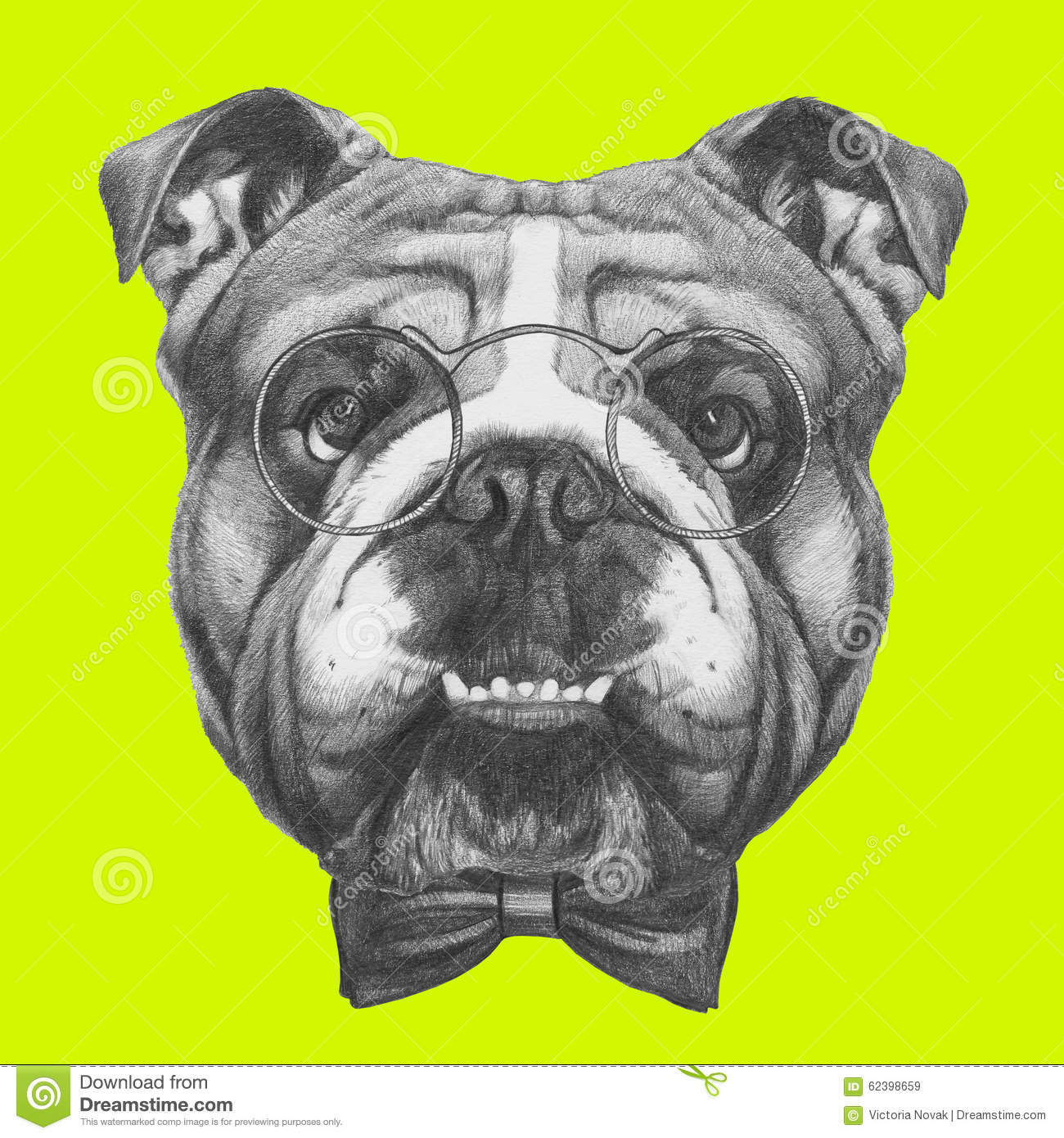 original drawing of english bulldog with glasses and bow tie