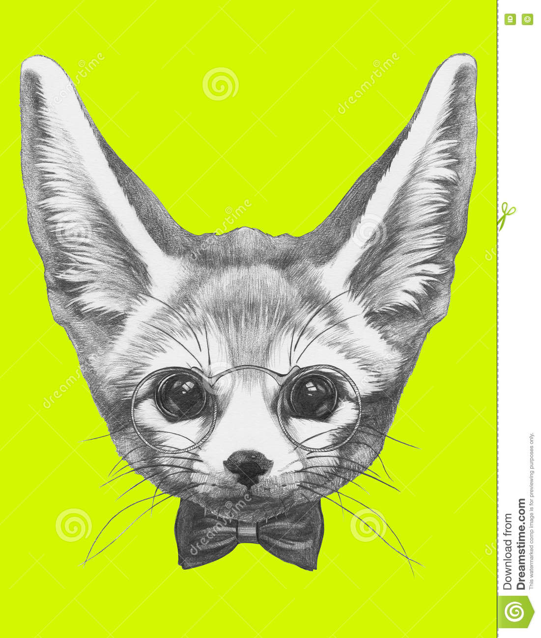 Original Drawing Of Fennec Fox With Glasses And Bow Tie ...