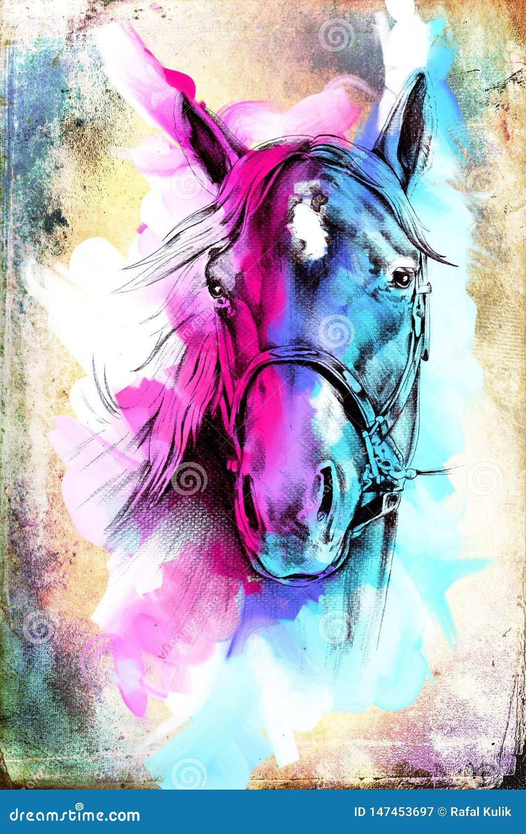 Original Oil Painting Of A Fine Arabian Horse Funny Artwork Stock Illustration Illustration Of Background Drawn 147453697