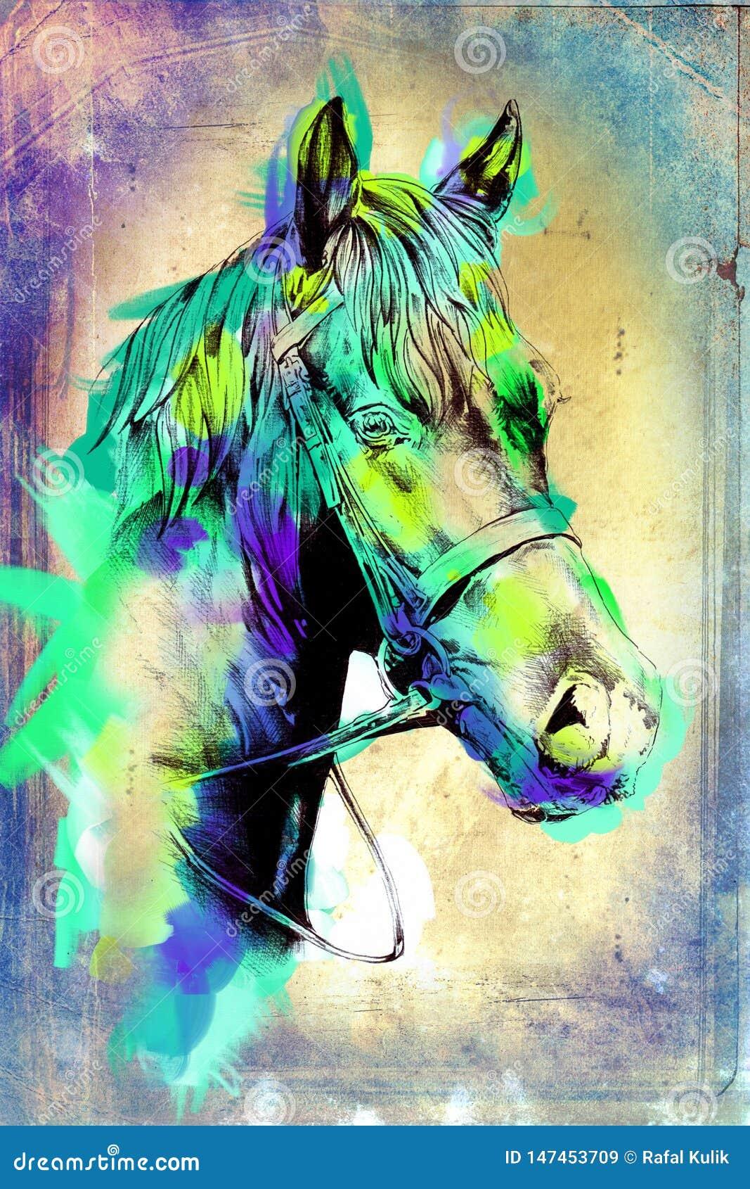Original Oil Painting Of A Fine Arabian Horse Funny Artwork Stock Illustration Illustration Of Horse Brush 147453709