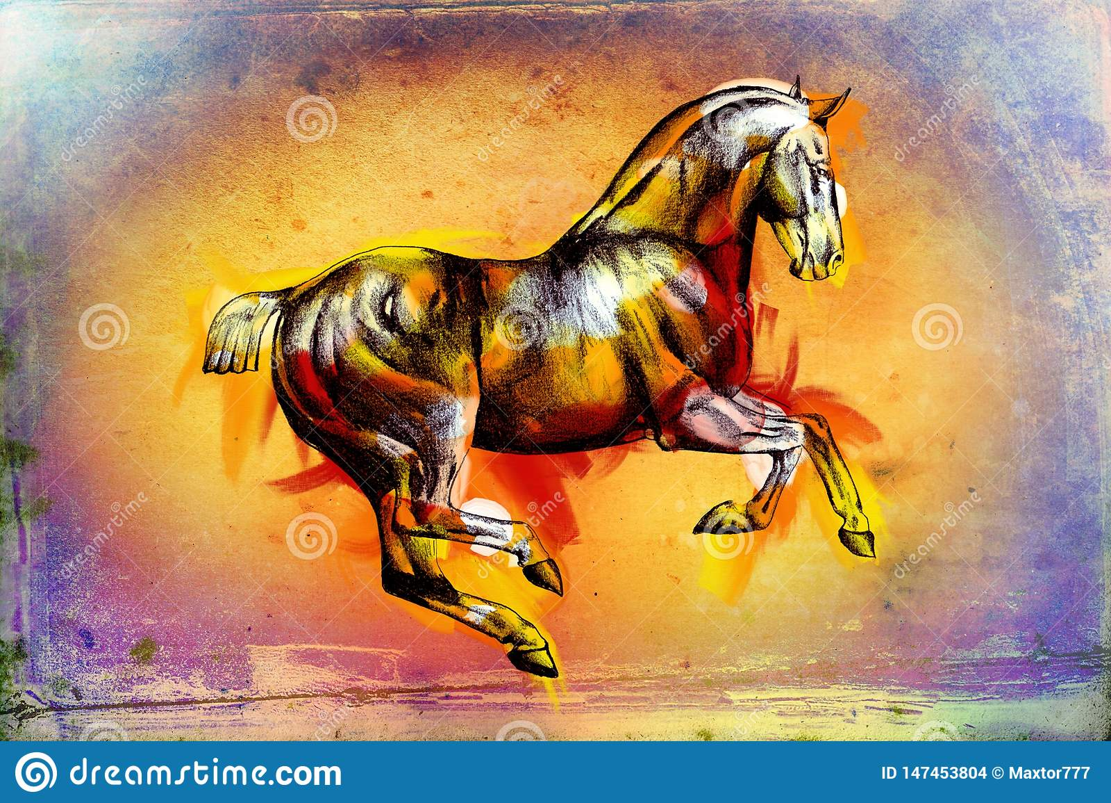 Original Oil Painting Of A Fine Arabian Horse Funny Artwork Stock