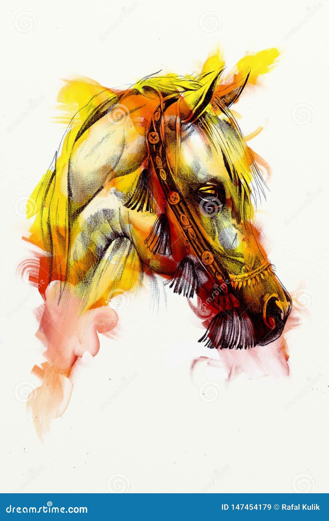 Original Oil Painting Of A Fine Arabian Horse Funny Artwork Stock Illustration Illustration Of Black Background 147454179