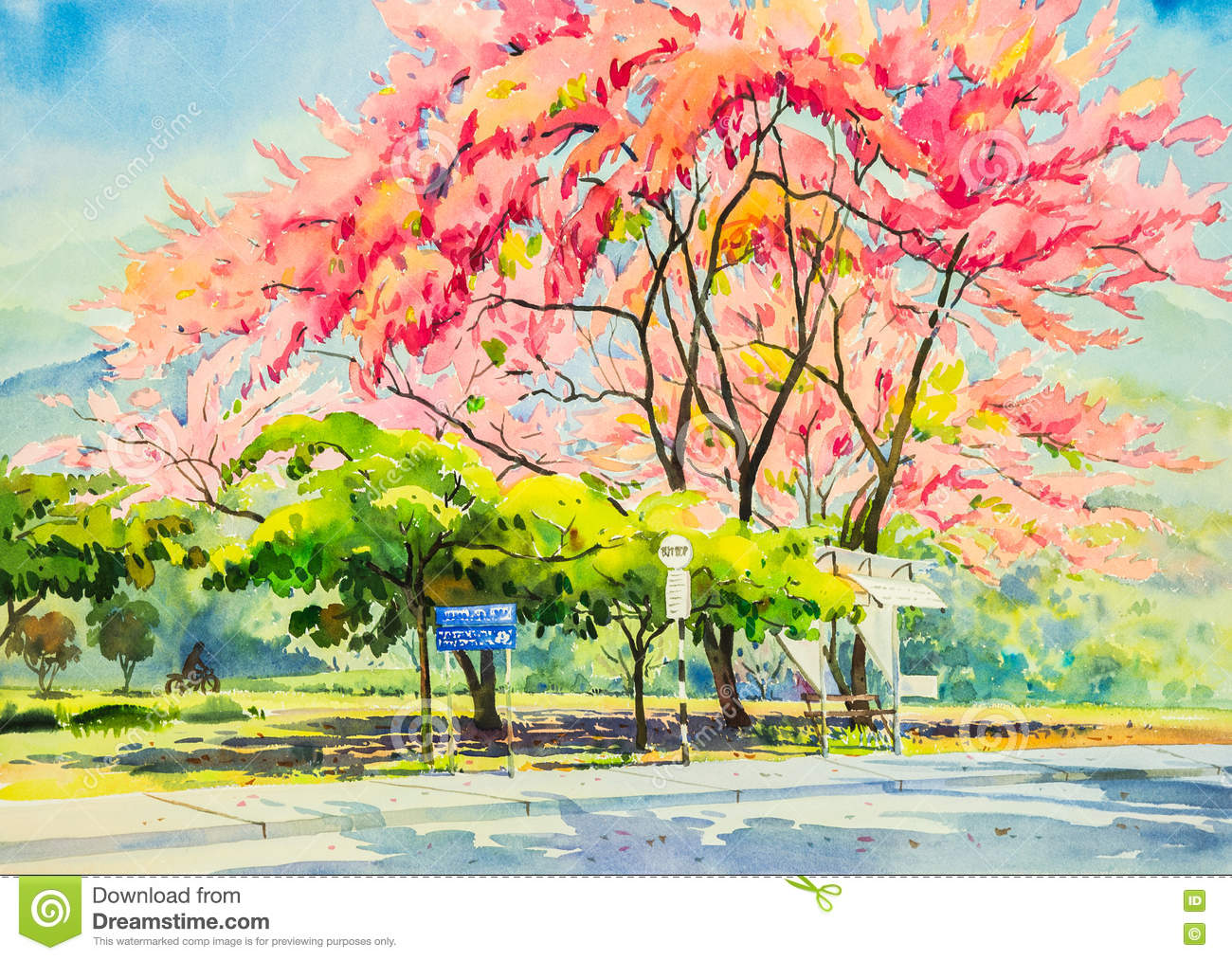 Original Painting Landscape Colorful Of Wild Himalayan Cherry Flower ...