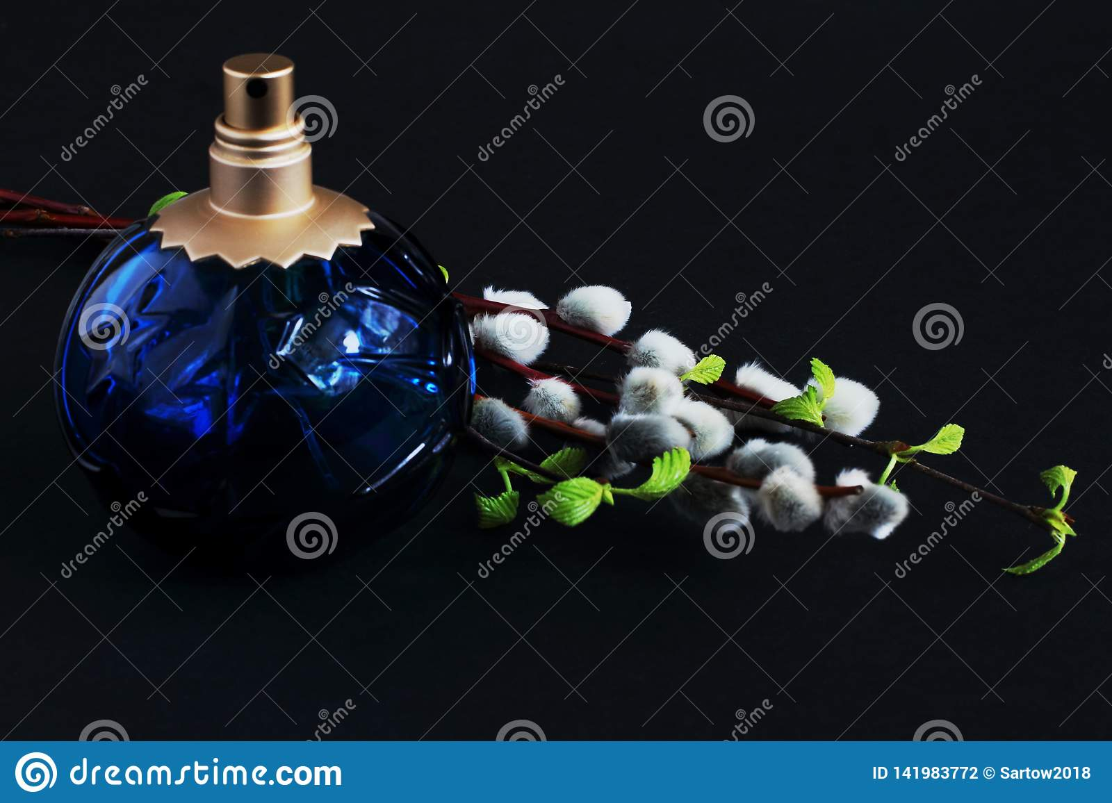 Exclusive perfume and blossoming willow and birch twigs on black background. Play of light and shadow. Concept — beauty, gift