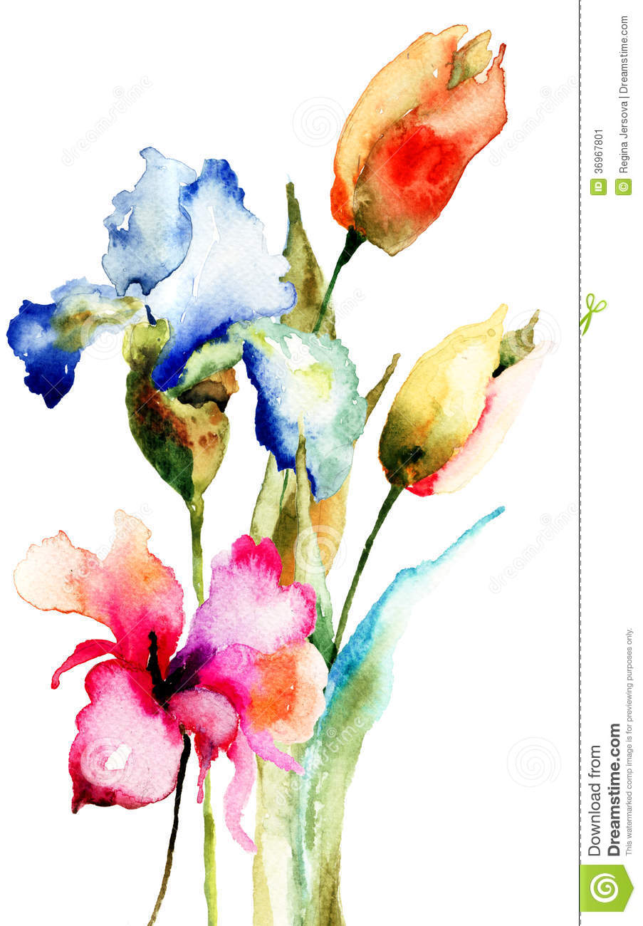 Original spring flowers stock image image 36967801 for Spring flowers watercolor