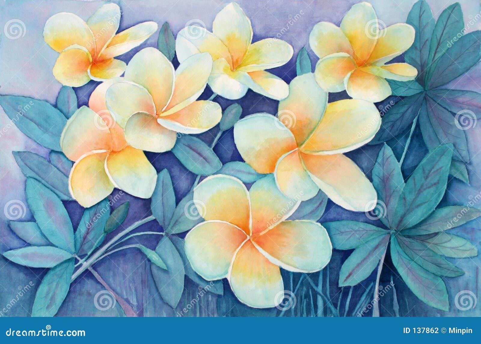 Original watercolor I painted of yellow tropical frangipani flowers ...