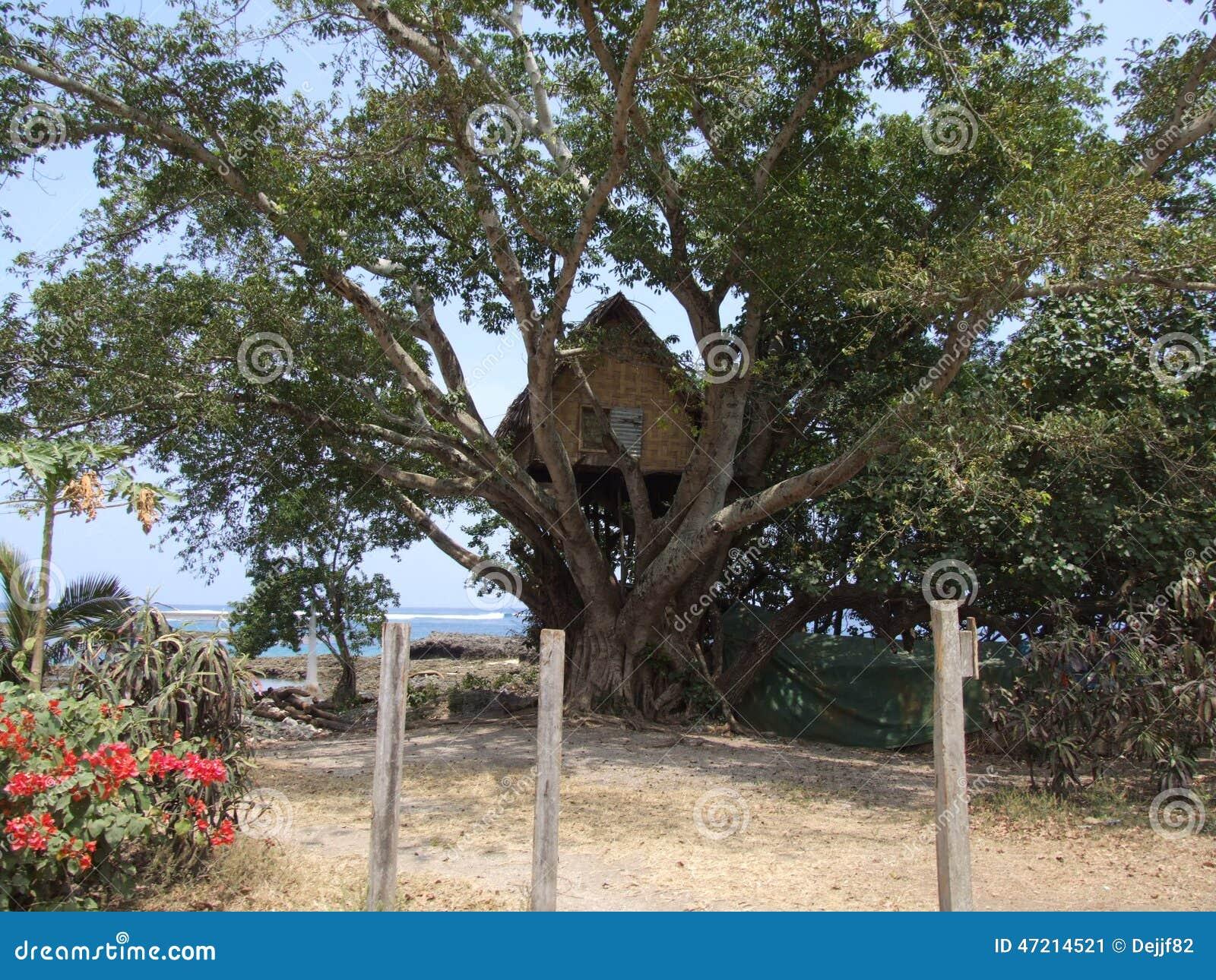 Origineel boomhuis in Vanuatu