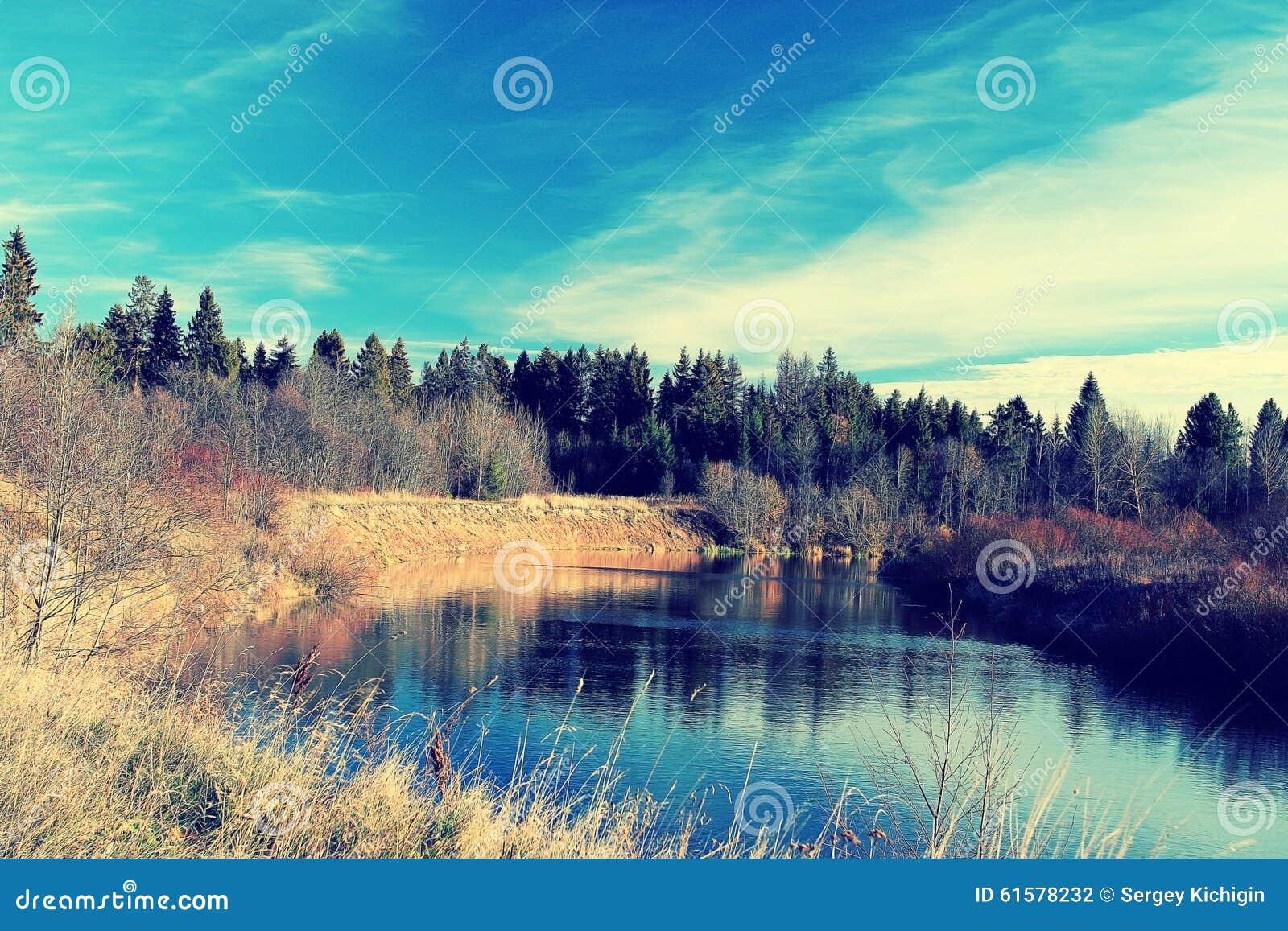 Orilla del lago con el bosque