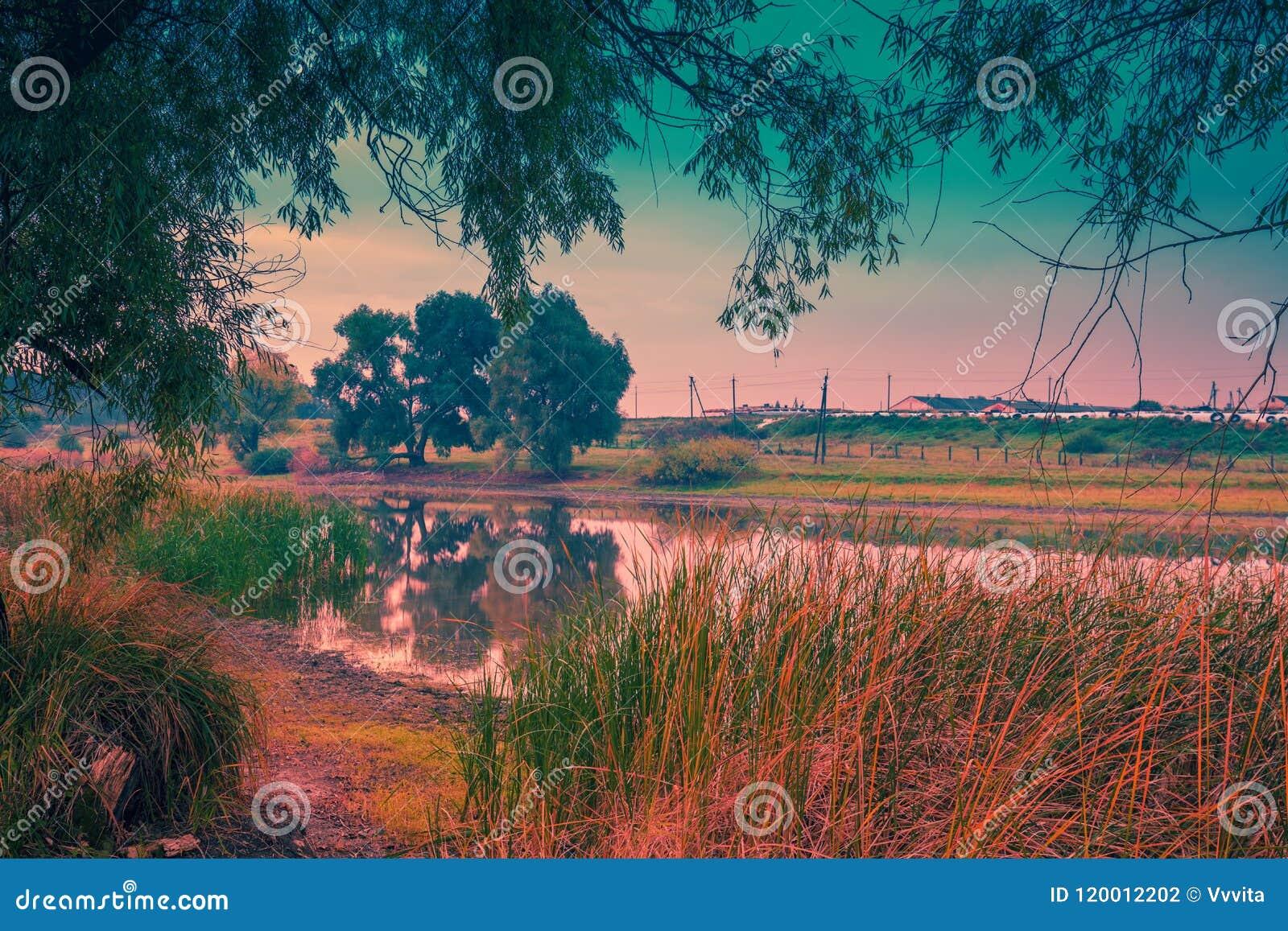 Orilla del lago con los árboles en la salida del sol