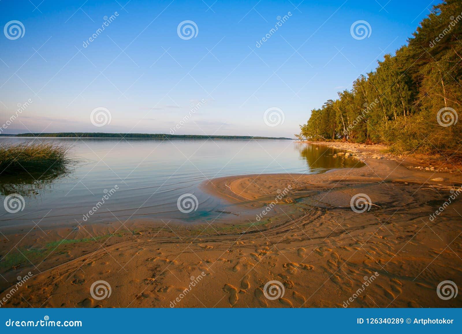 Orilla del lago que afila el paisaje mezclado del bosque, Bielorrusia