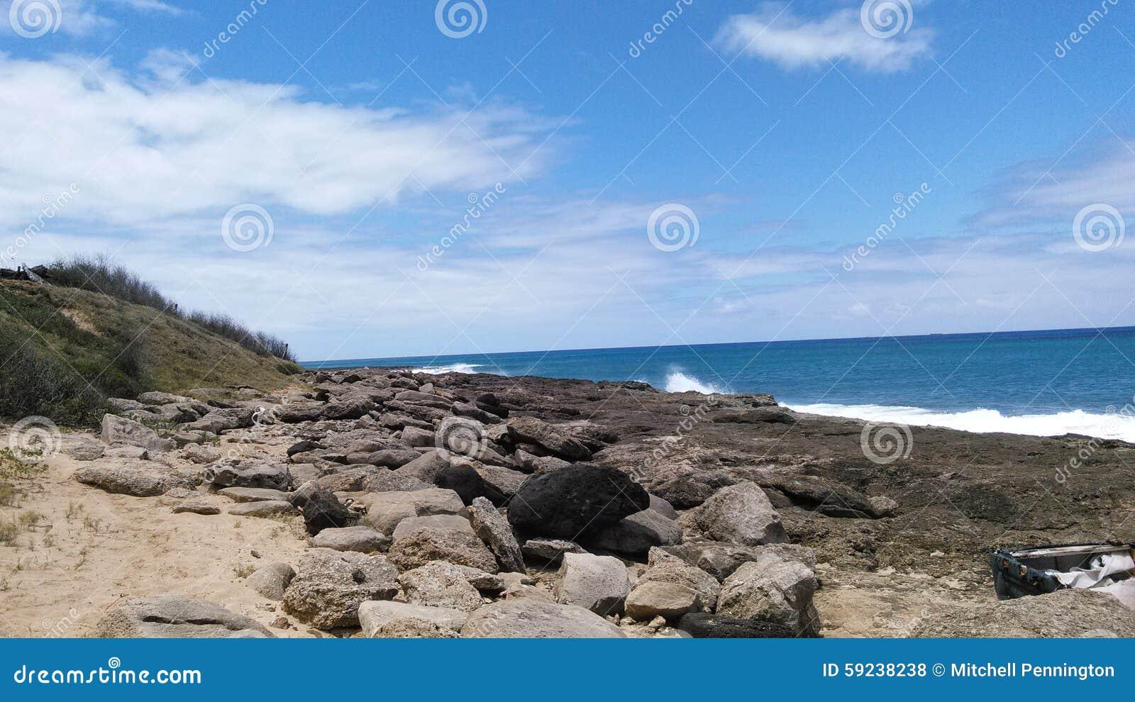 Orilla Hawaii de la playa de Oahu