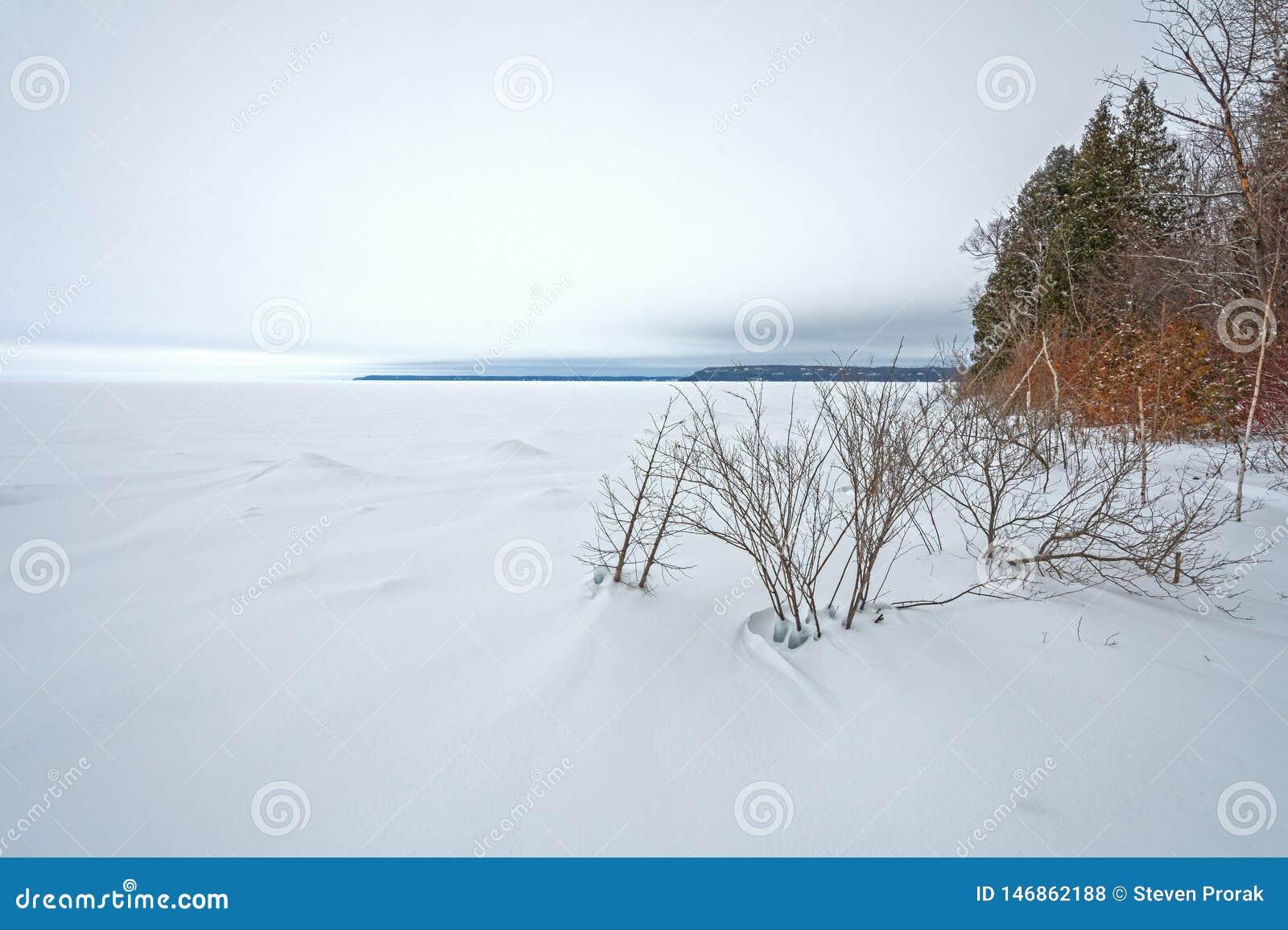 A orillas del lago panorama congelado en invierno