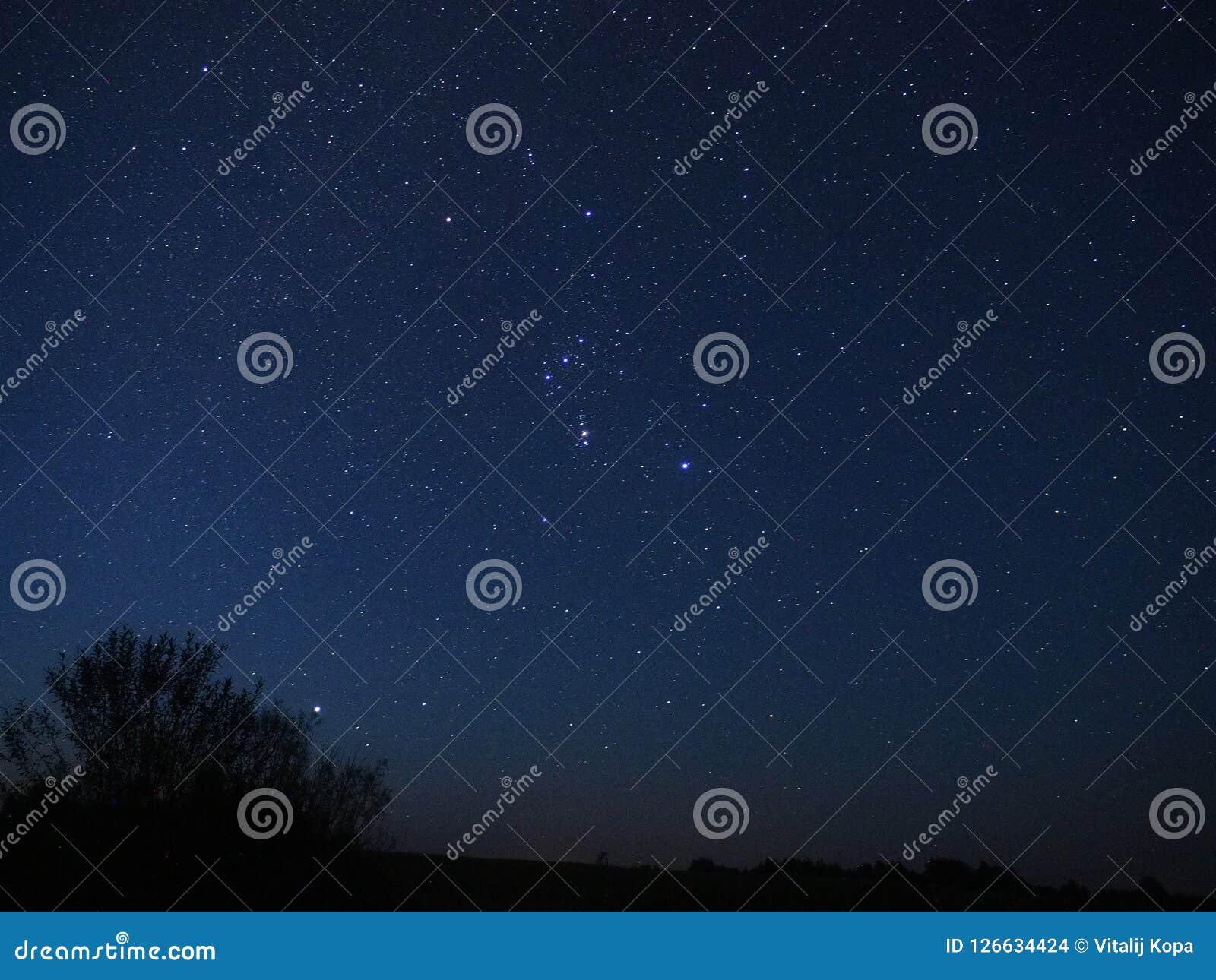 Orionconstellatie en Sirius-ster het waarnemen