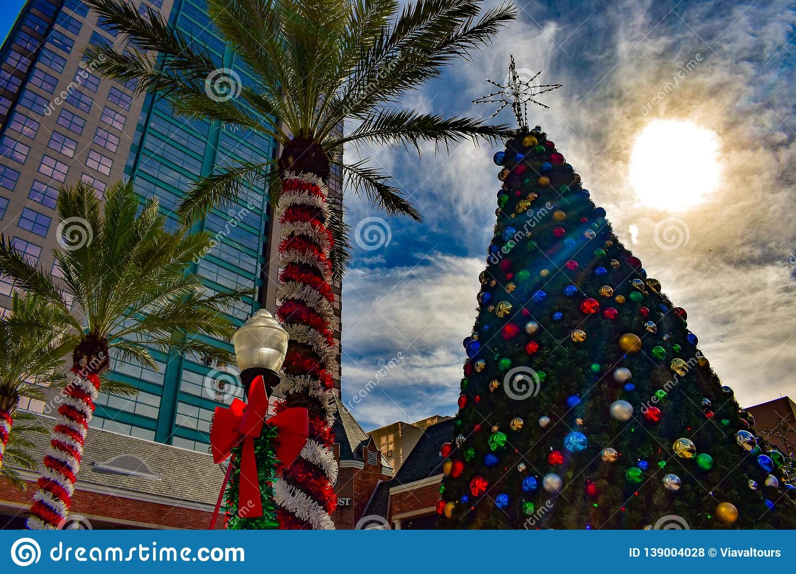Palm Trees Decorated For Christmas And Christmas Tree On Sunset