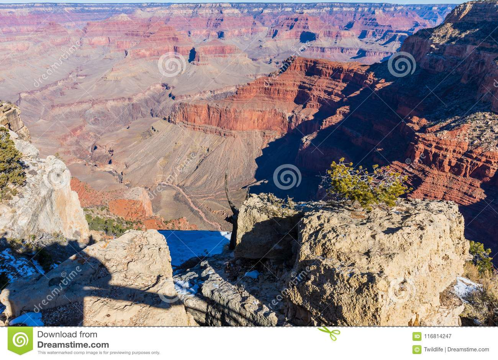 Orlo del sud del grande canyon
