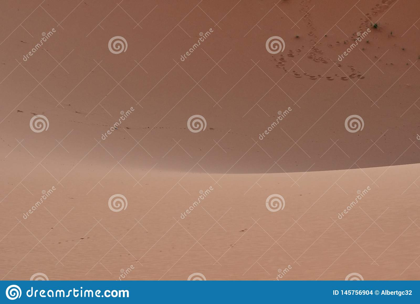 Orme sulla sabbia del deserto