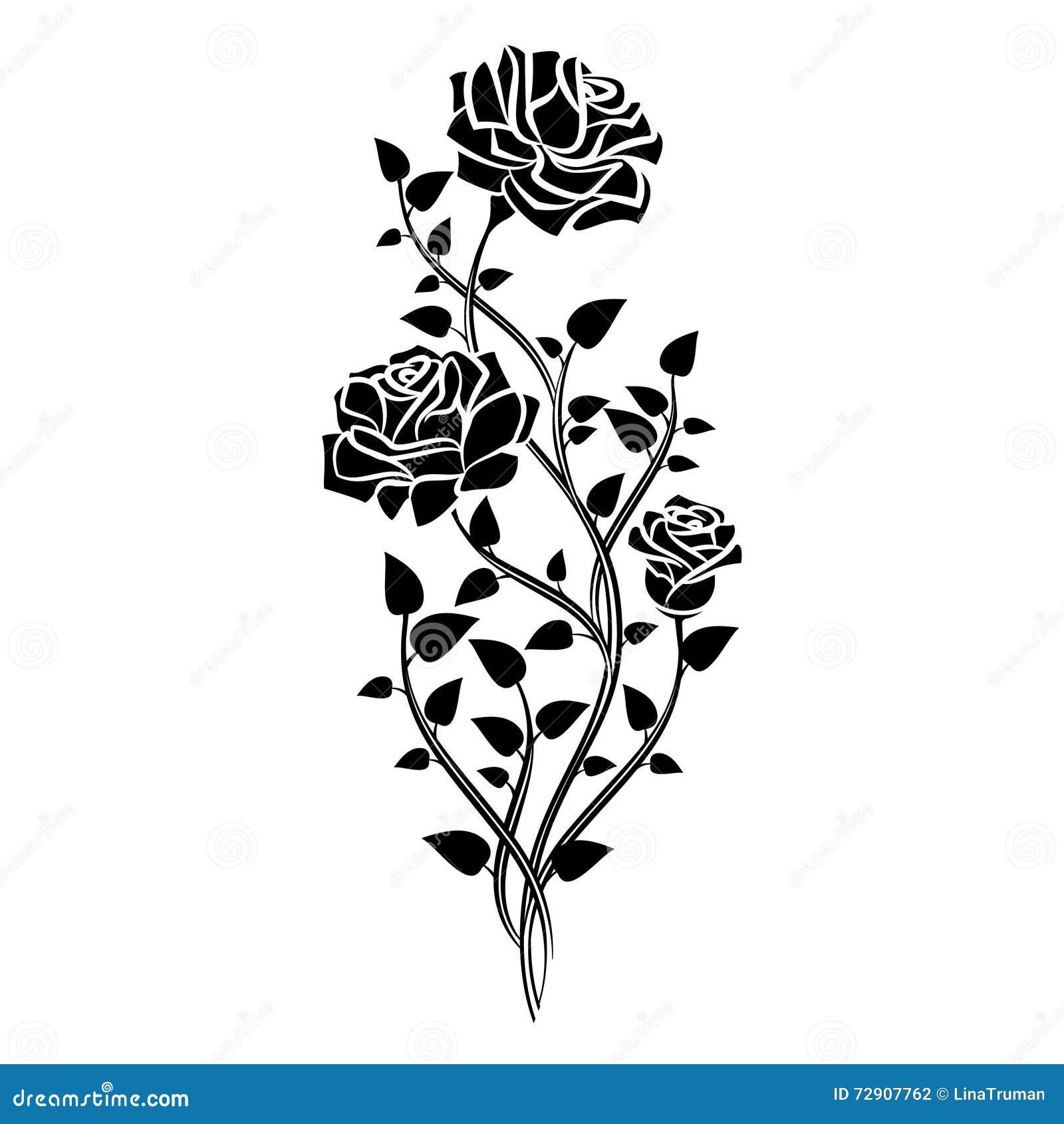 Ornament Of Roses Decorative Floral Design Elements Vector Stock