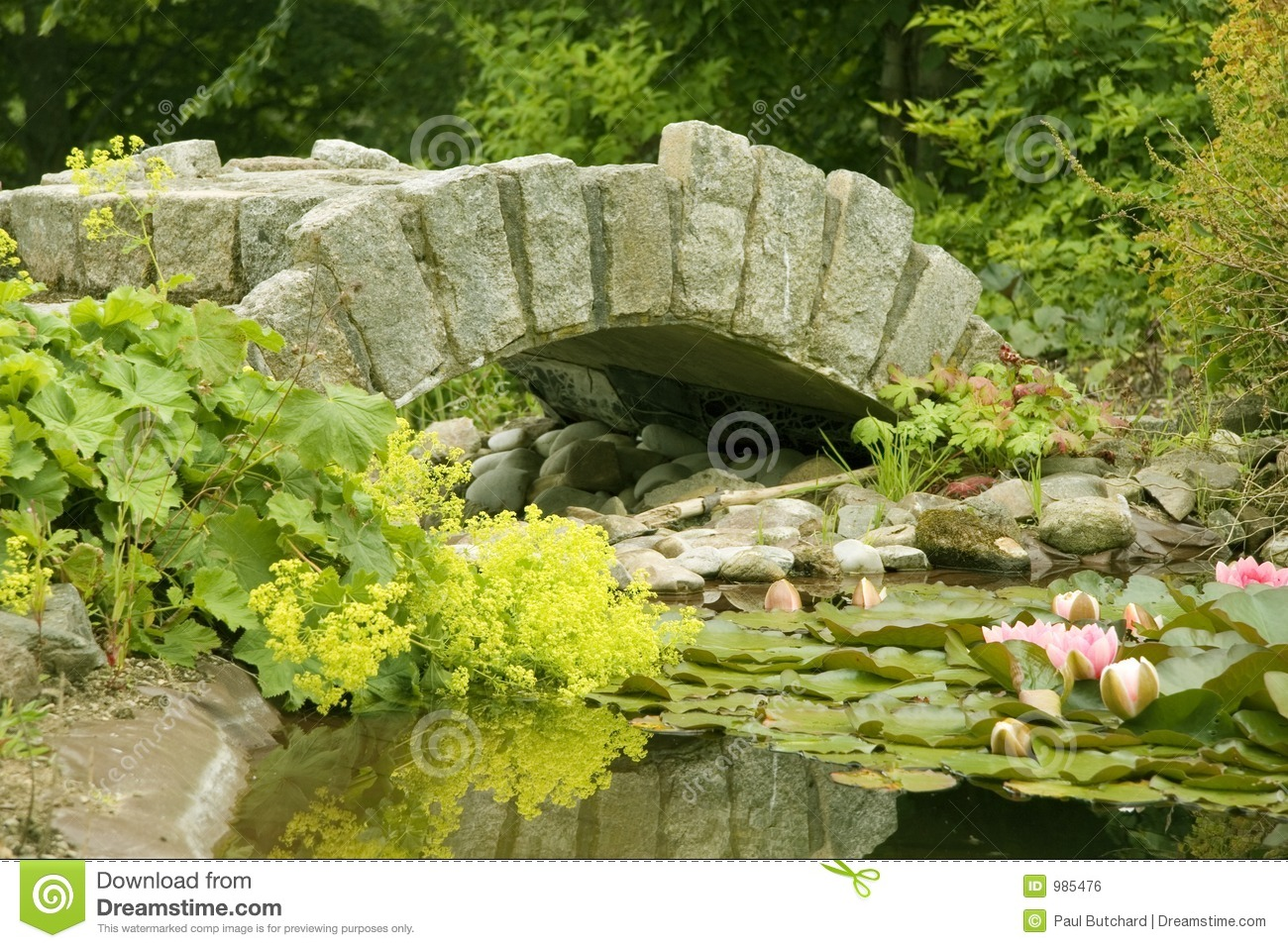 Ornamental bridge and pond royalty free stock image for Ornamental pond