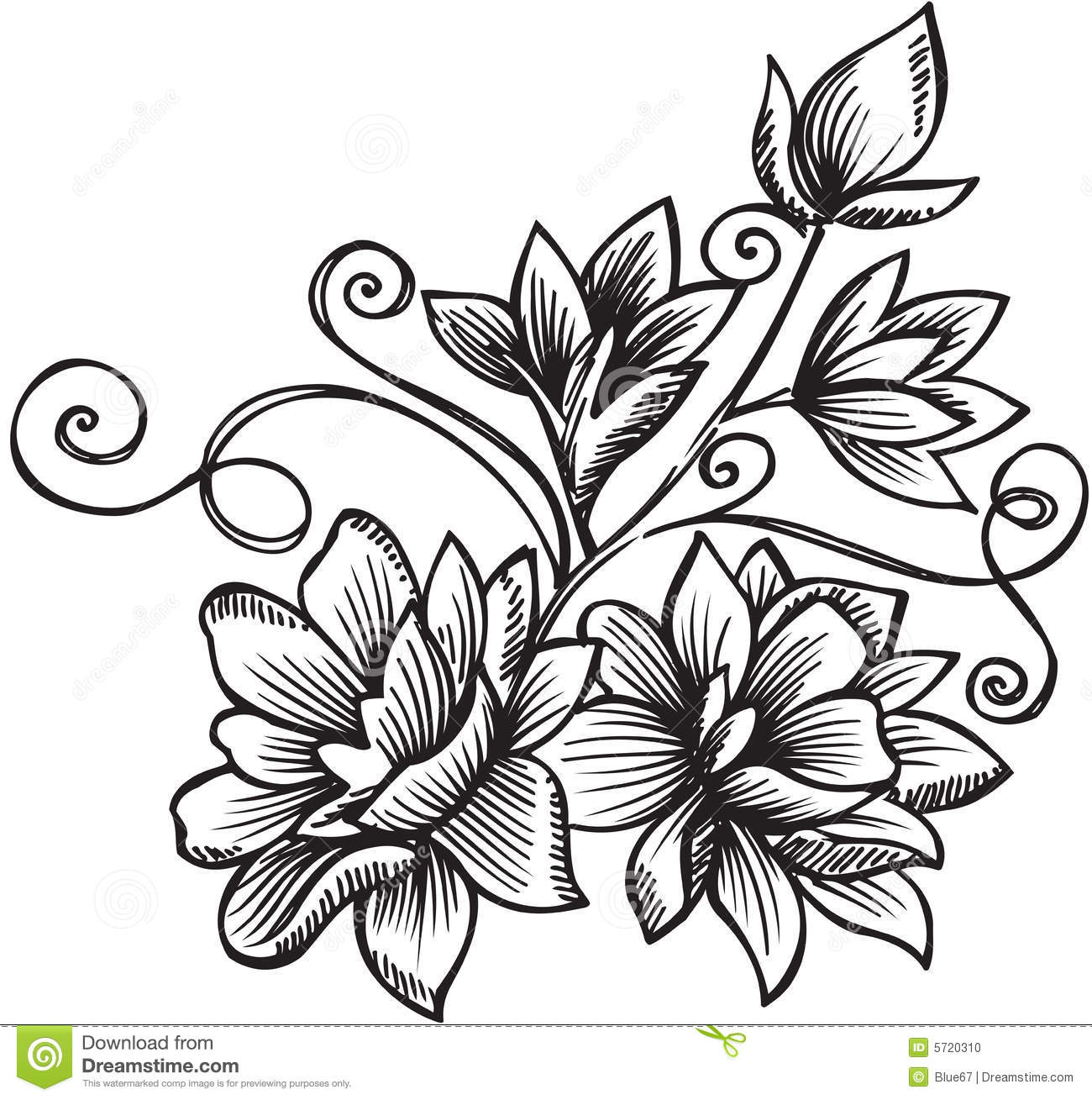 ornamental flower bouquet vector illustration stock photo image