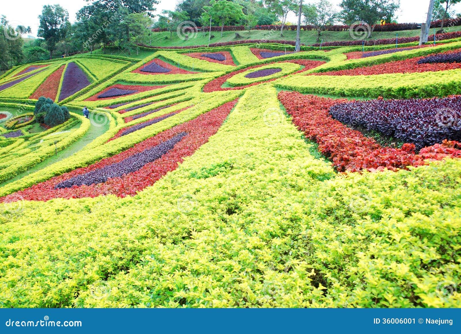 Ornamental garden stock image image of flowerbed house for Ornamental garden