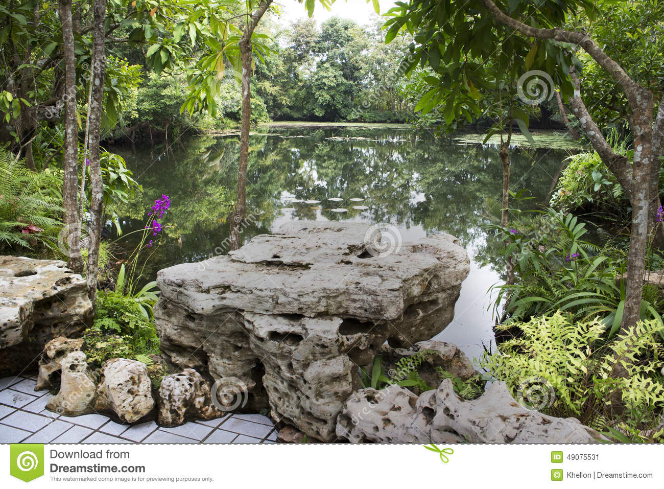 Ornamental pond stock photo image 49075531 for Ornamental pond