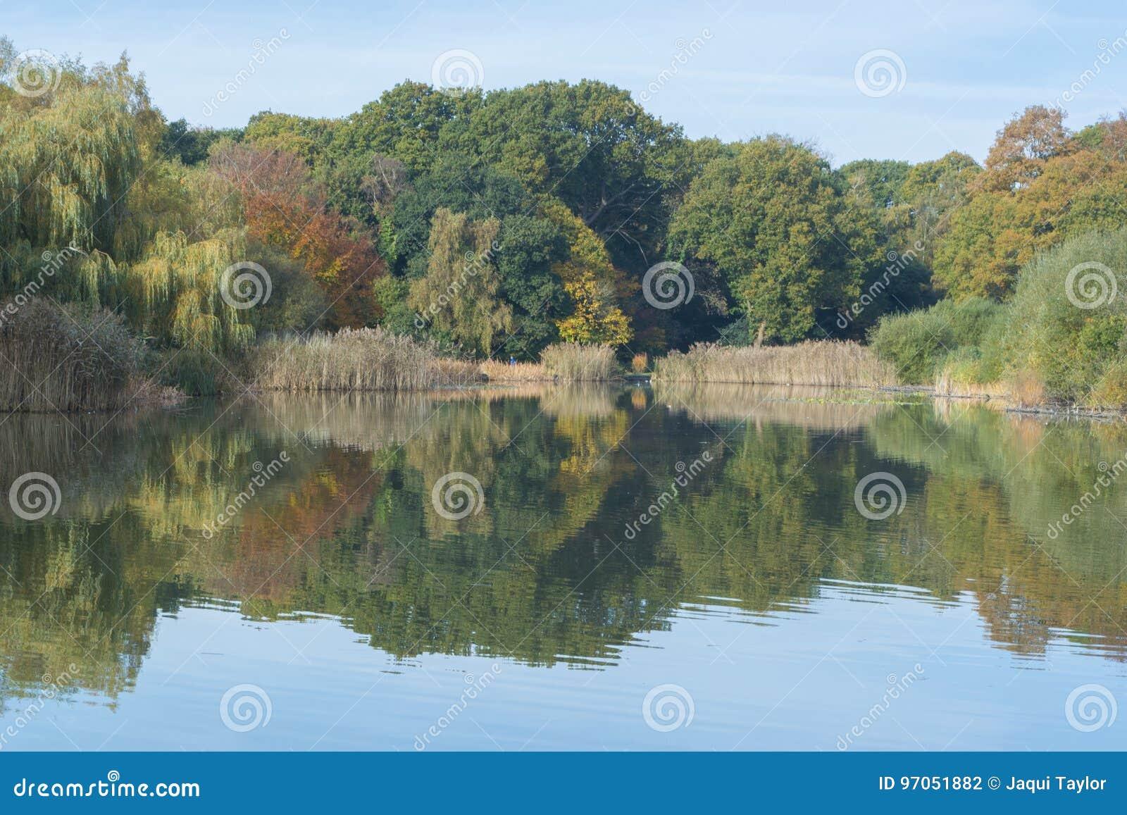 The Ornamental Pond Southampton in Autumn