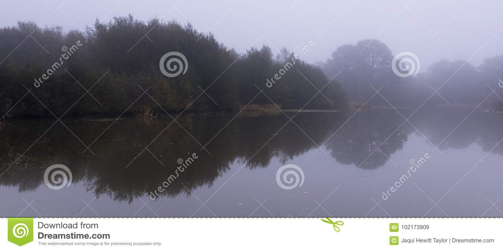 Misty Ornamental Pond, Southampton Common