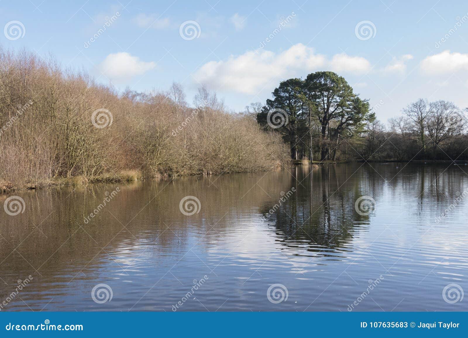 The Ornamental Pond, Southampton Common