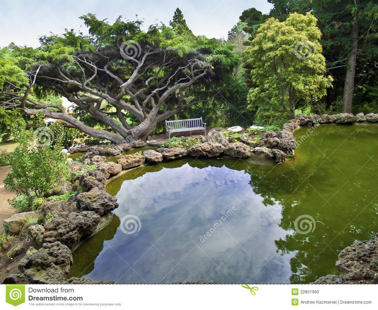 Ornamental pond view stock photo image 22851960 for Ornamental pond