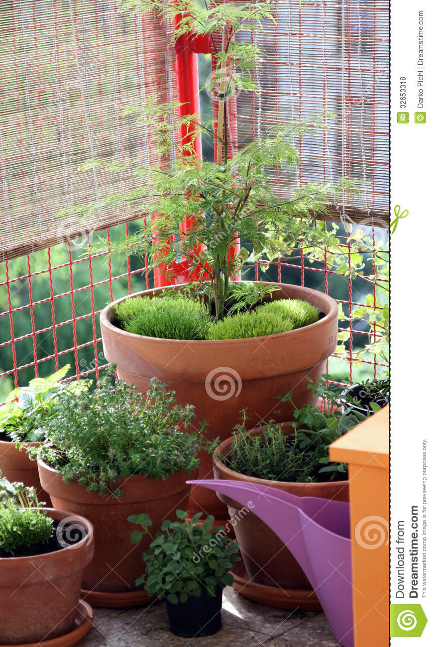 Ornamental pot plants on the balcony royalty free stock for Best plants for small balcony