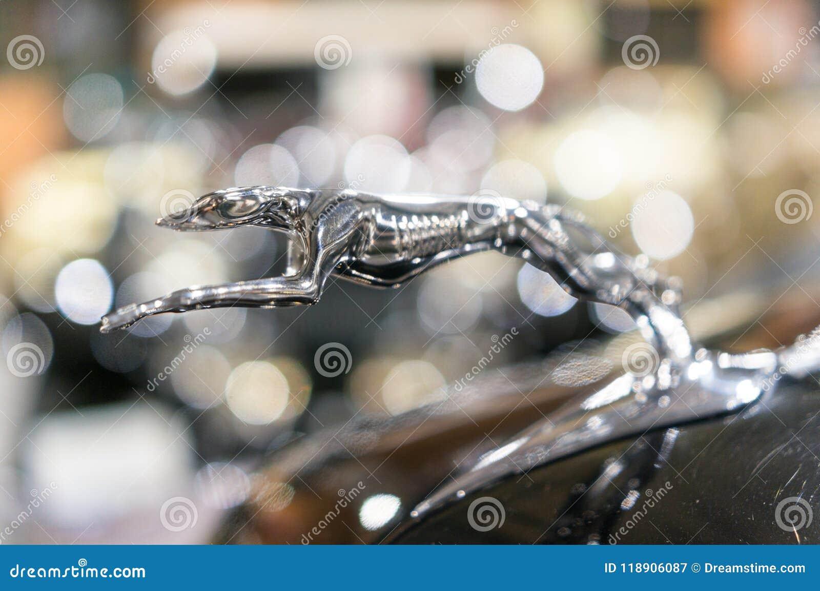 Ornamento del cappuccio di Jaguar