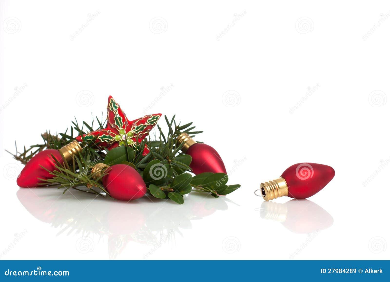 Ornamento y rboles de hoja perenne de la navidad de la for Arboles de hoja perenne en galicia