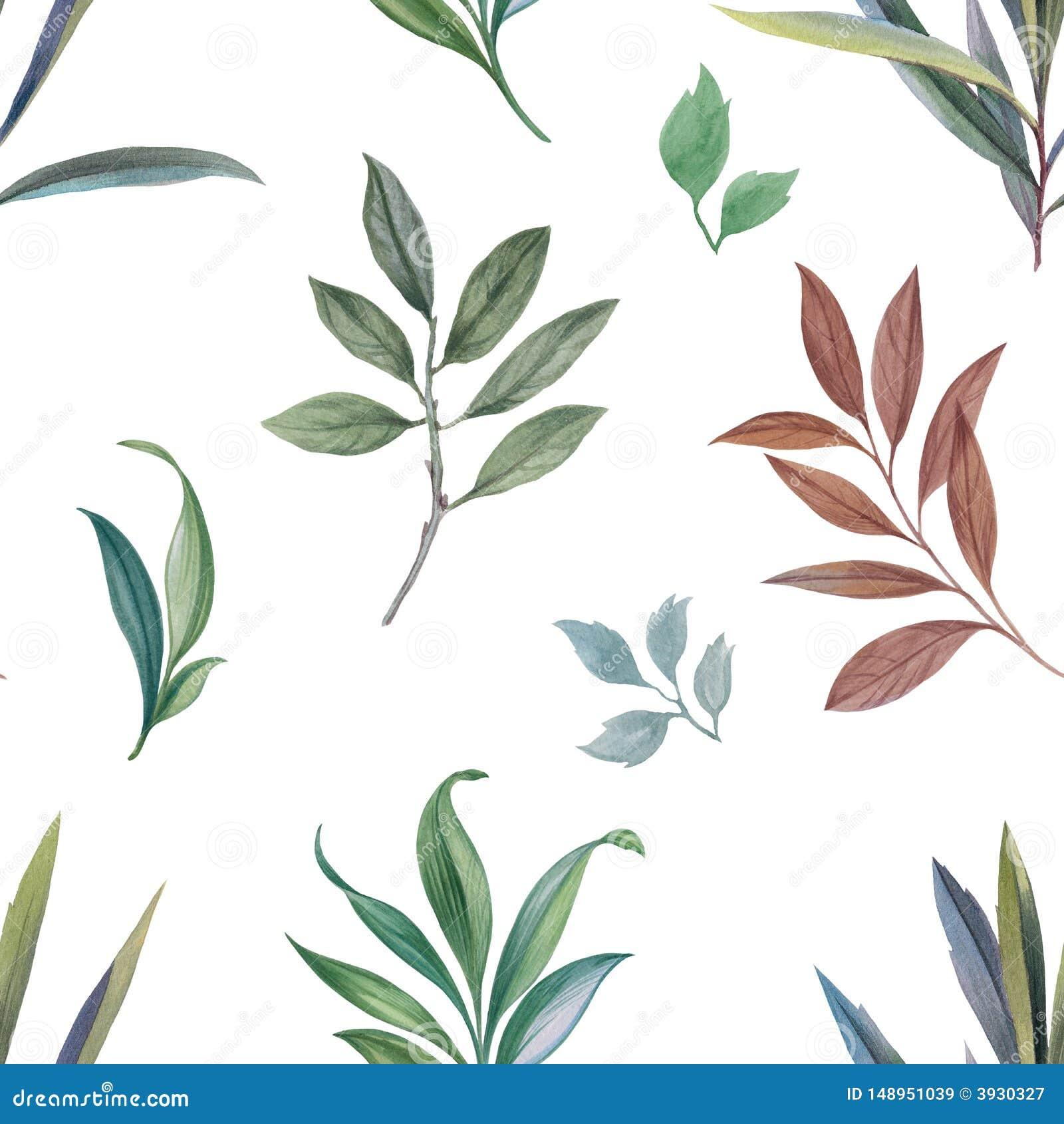 Ornement des feuilles et des branches