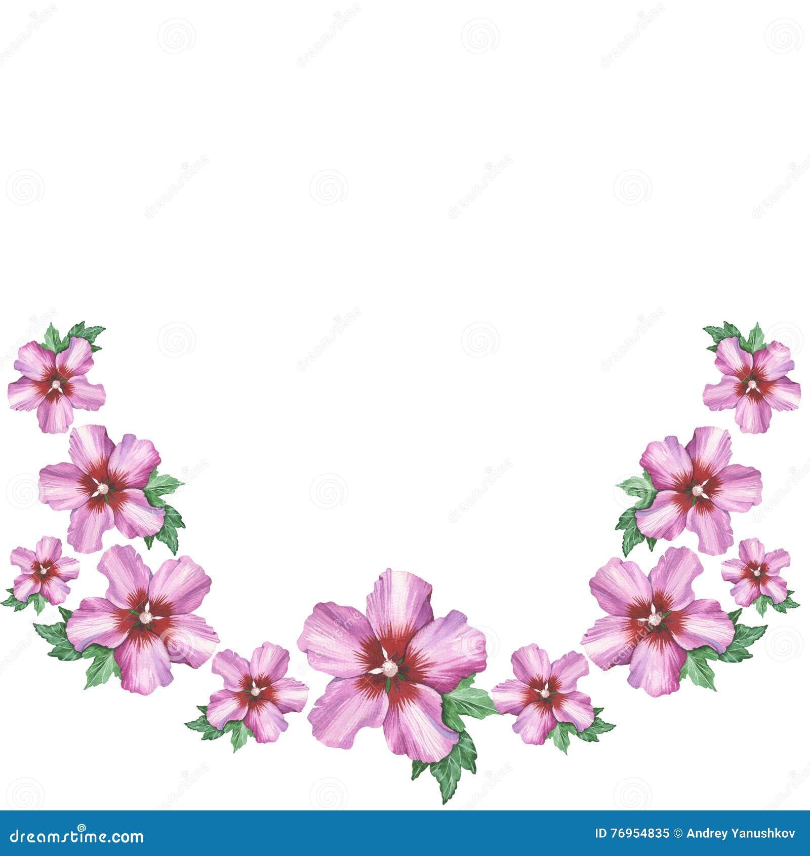 ornement rose de guirlande de fleur de ketmie dans le dessin d