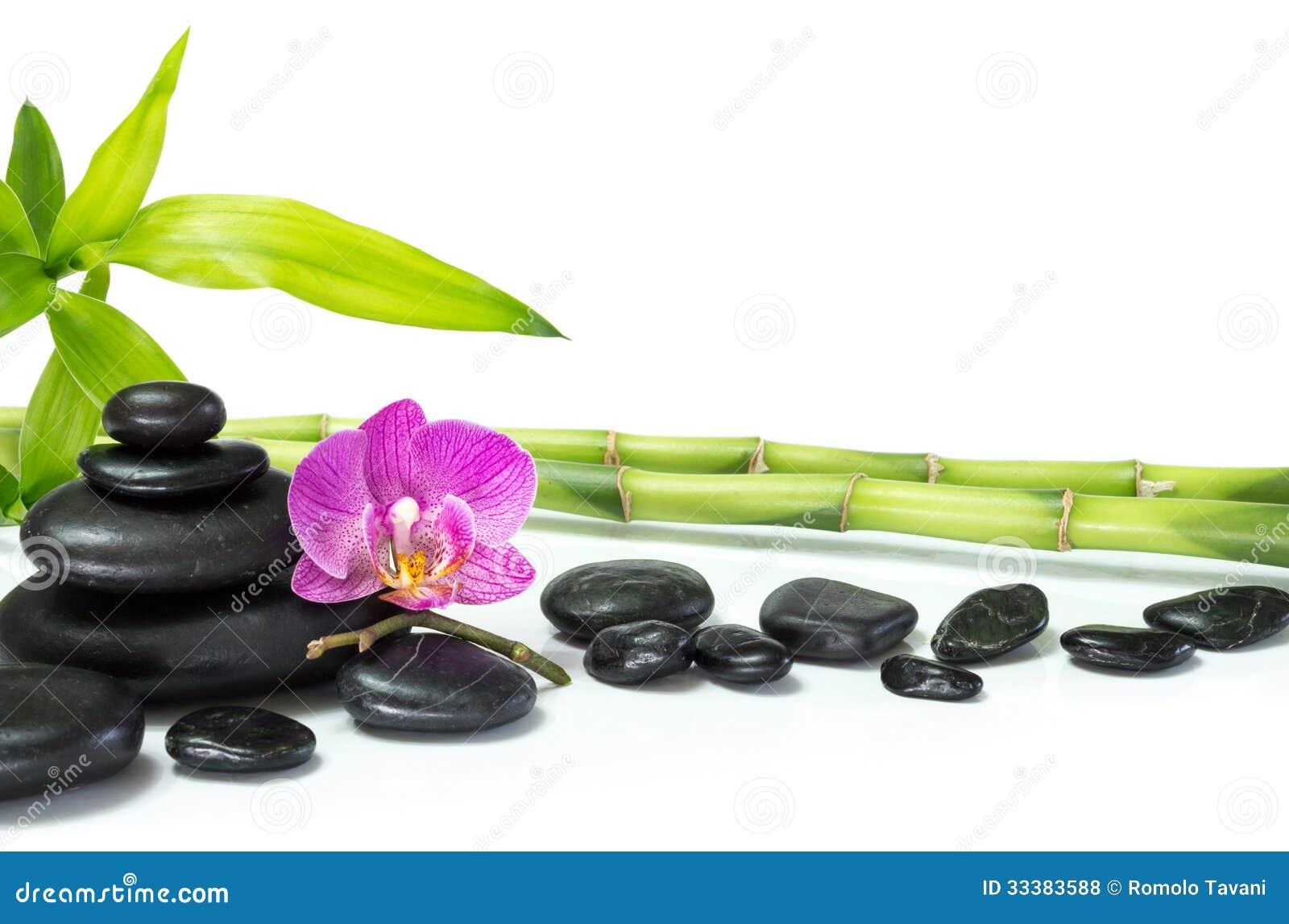 Orquídea roxa com bambu e muitas pedras