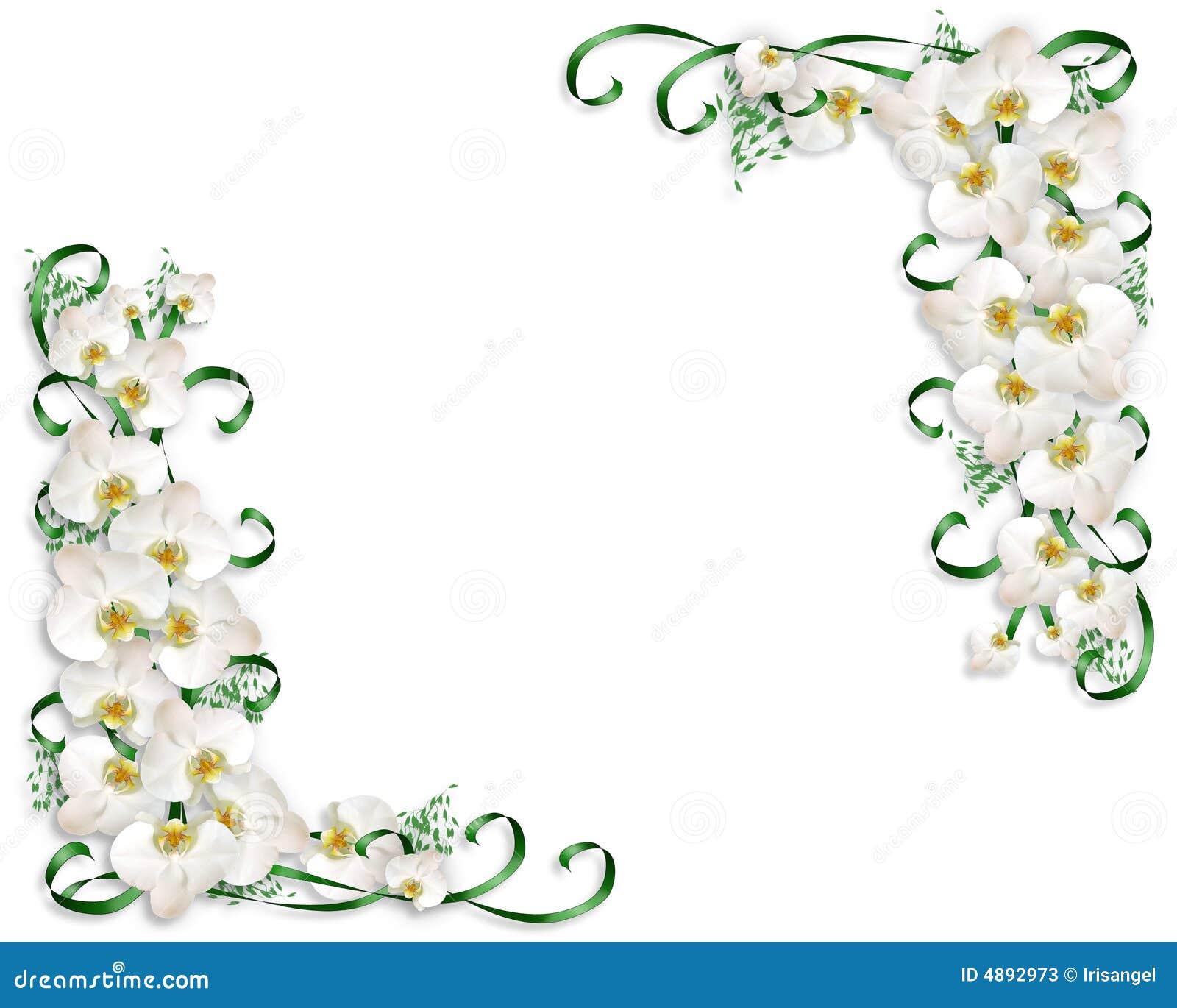 Orquídeas Brancas Que Wedding O Convite Fotos de Stock - Imagem: 4892973