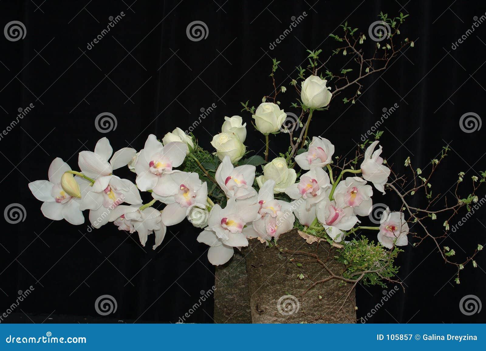 Orquídeas e composição das rosas