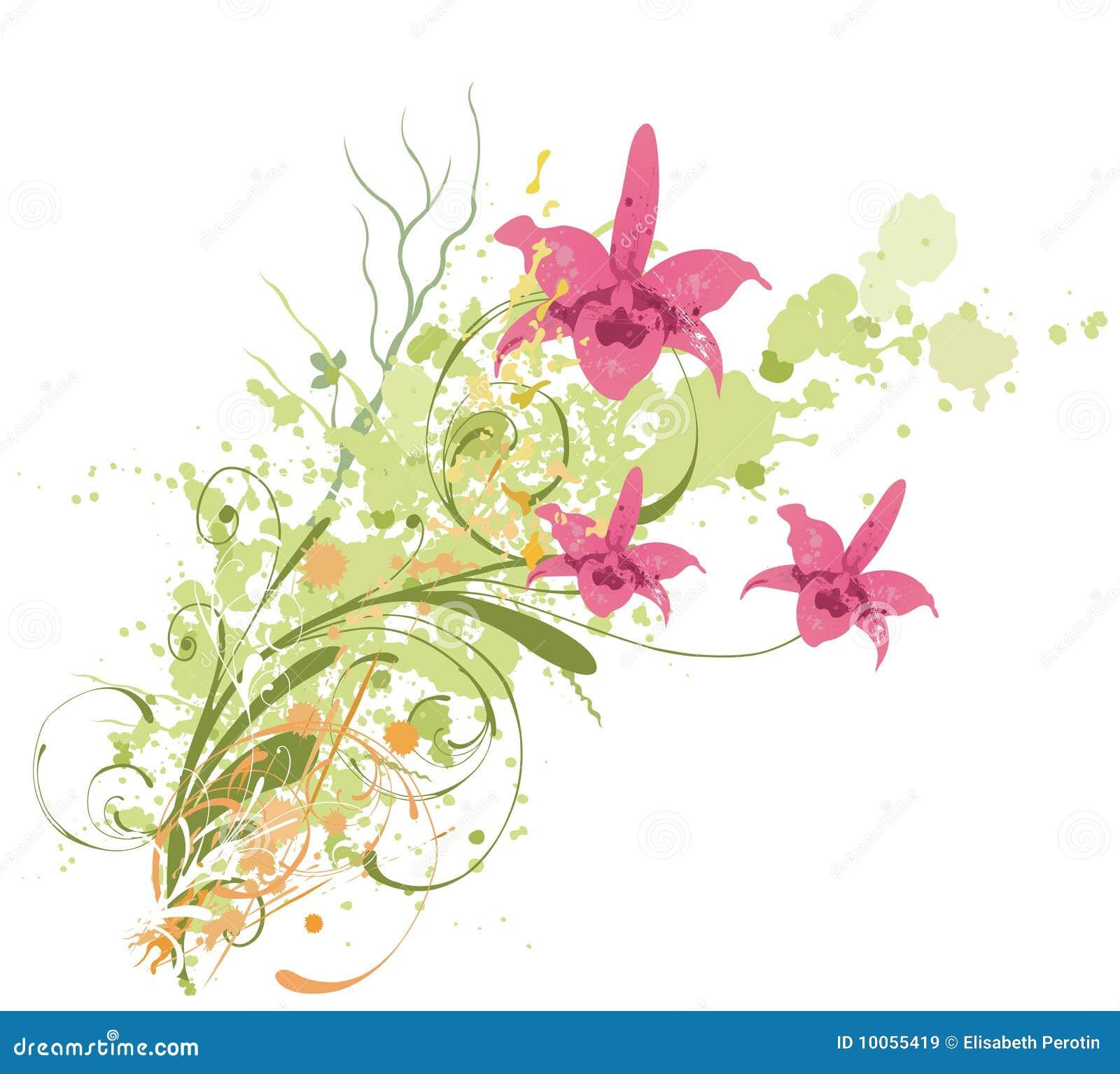 Orquídeas sujas