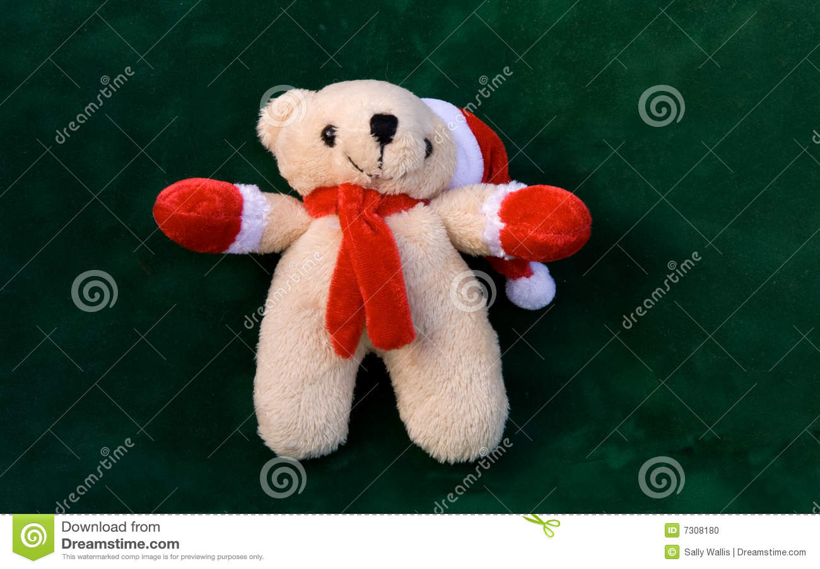 Orso del giocattolo con la protezione