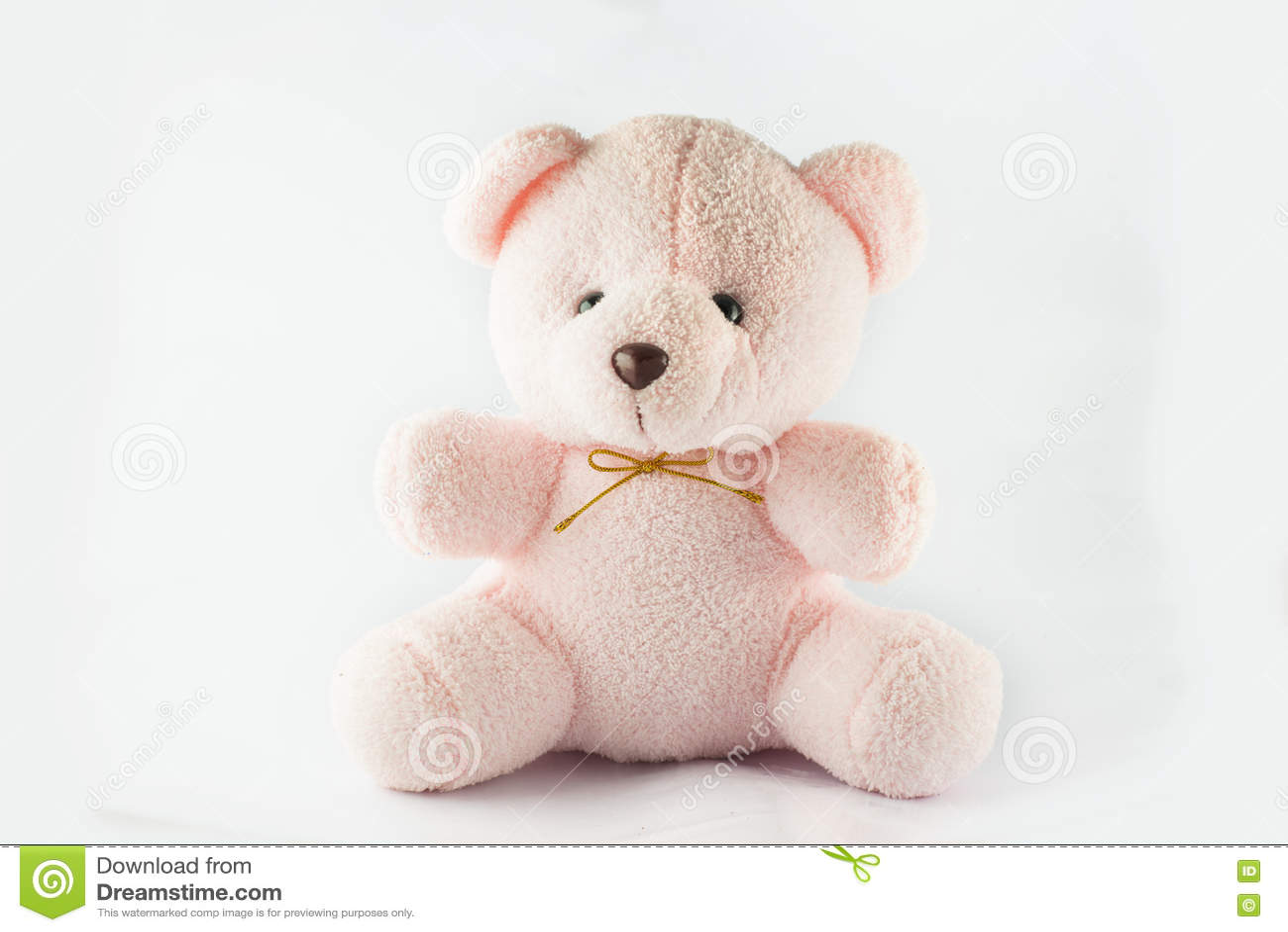 Orso di orsacchiotto dentellare