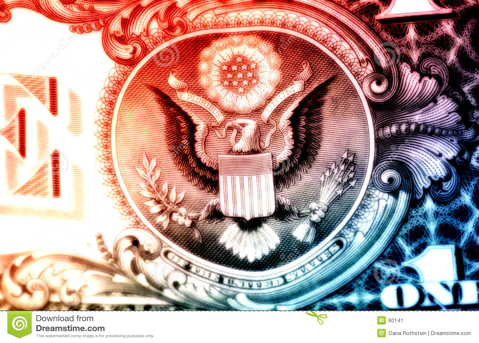 Orzeł amerykański