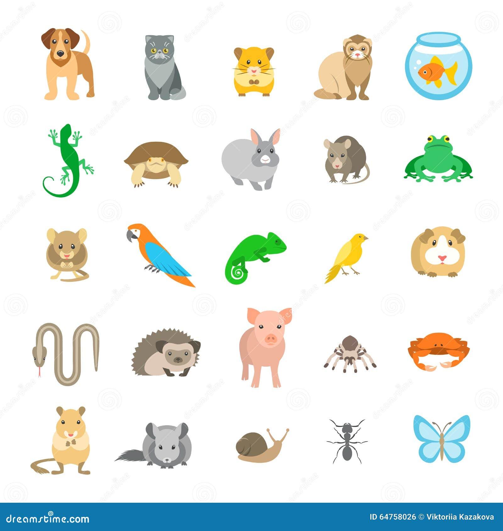 Os ícones coloridos lisos do vetor dos animais de estimação dos animais ajustaram-se no branco
