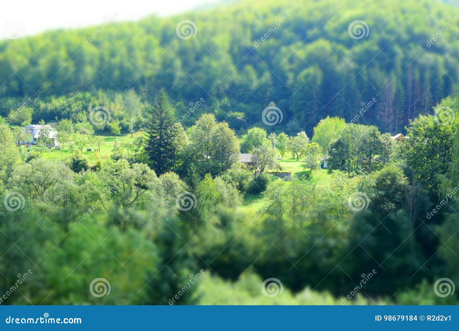 Os últimos dias do verão nos Carpathians